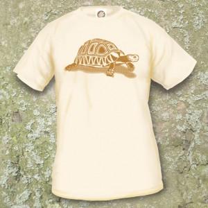 Turtle Model 10