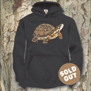 Turtles Model 13C, Terrapene carolina triunguis, Sold Out, black Hooded Sweater