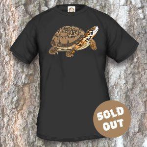 Turtles Model 13A, Terrapene carolina triunguis, Sold Out, black T-shirt
