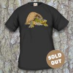 Turtles Model 15A Sternotherus carinatus Sold Out, black shirt