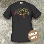Turtles Model 16 Clemmys guttata, Sold Out