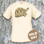 Turtles Model 17 Sold Out