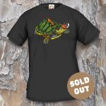 Turtles Model 20 Sold Out