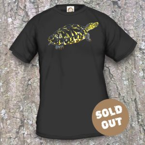 turtle-arts-nl Turtle Night 2017, black shirt, sold out