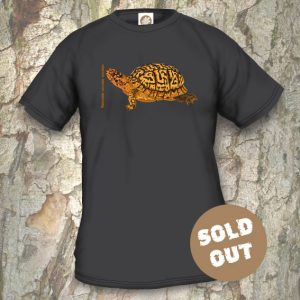 Turtles Model 5, Terrapene carolina carolina, Sold Out, black T-shirt