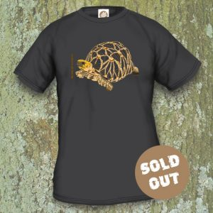 Turtles Model 6A, Geochelone platynota, Sold Out, black T-shirt