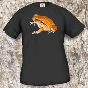Frogs/Toads Model 3, Dyscophus guineti, black T-shirt
