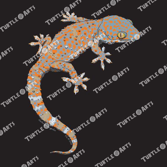 TLM2 Gecko gecko gecko artwork